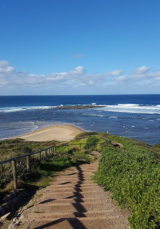 Long Reef Headland - small - About us